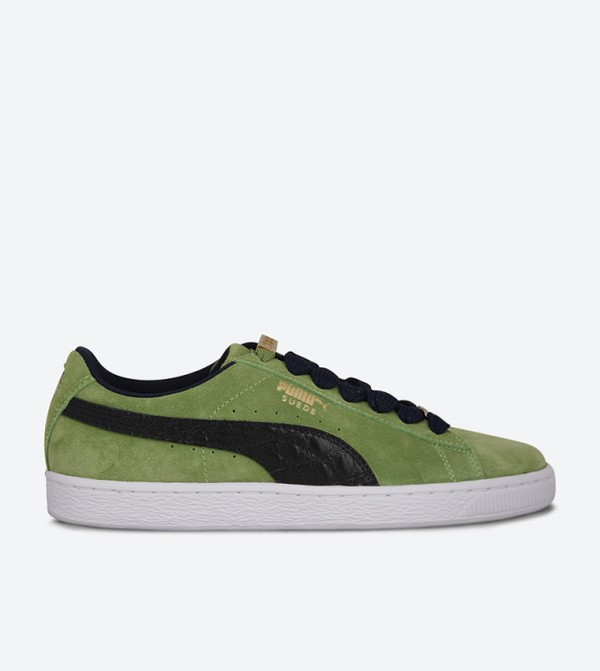 36536203-FOREST-GREEN