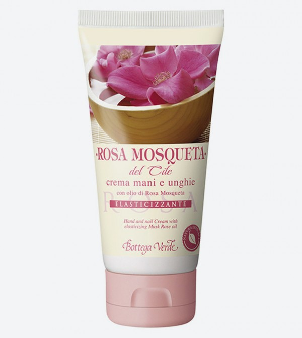 BV122709-CHILE-MUSK-ROSE