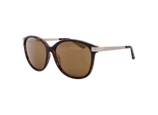 Brown Sunglasses-KC2753